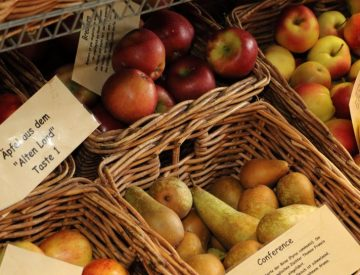 regional angebautes Obst