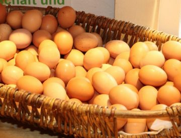 Eier aus ökologischer  Freilandhaltung